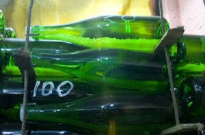 101046601-Sparkling wine bottles resting on lees