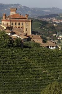 177040506-Barolo Castle